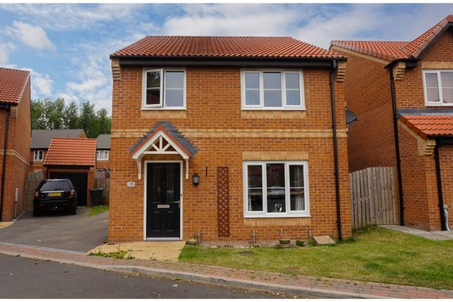 Thumbnail Detached house for sale in Bluebell Walk, Catterick Garrison