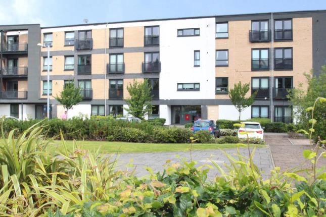 Thumbnail Flat for sale in Firpark Court, Dennistoun, Glasgow