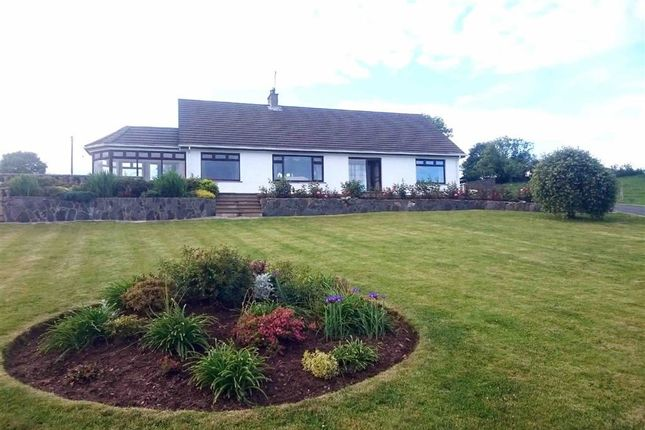 Thumbnail Detached bungalow for sale in Begney Hill Road, Dromara, Down