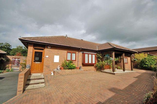 Thumbnail Detached bungalow for sale in Talar Deg, Llanilar, Aberystwyth