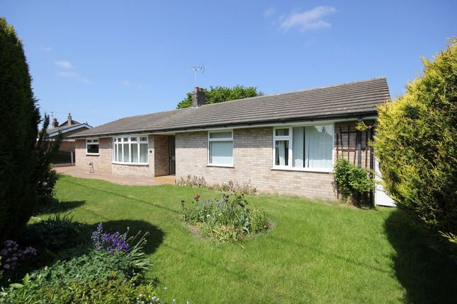 Thumbnail Bungalow for sale in Francis Lane, Blofield, Norwich