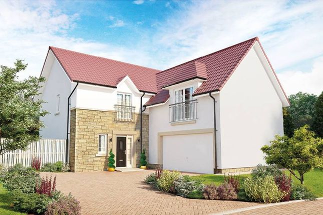 "Thumbnail Detached house for sale in ""The Dewar"" at Jardine Avenue, Falkirk"