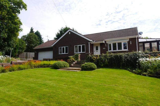 Thumbnail Detached bungalow to rent in Main Street, Billinge, Wigan