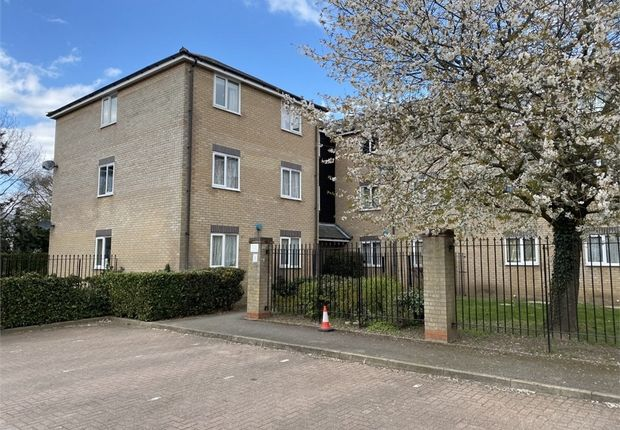 Thumbnail Flat for sale in Flandersfeild, Colchester, Essex