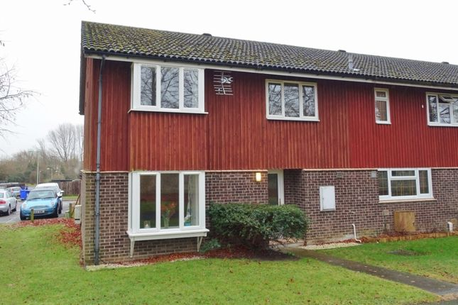 Thumbnail Semi-detached house to rent in Golden Miller Close, Newmarket