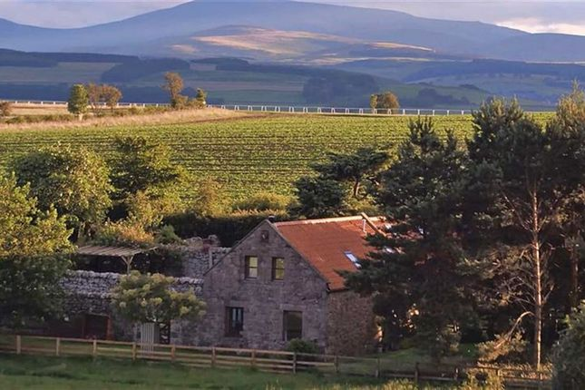 Thumbnail Cottage for sale in Chatton, Alnwick, Northumberland