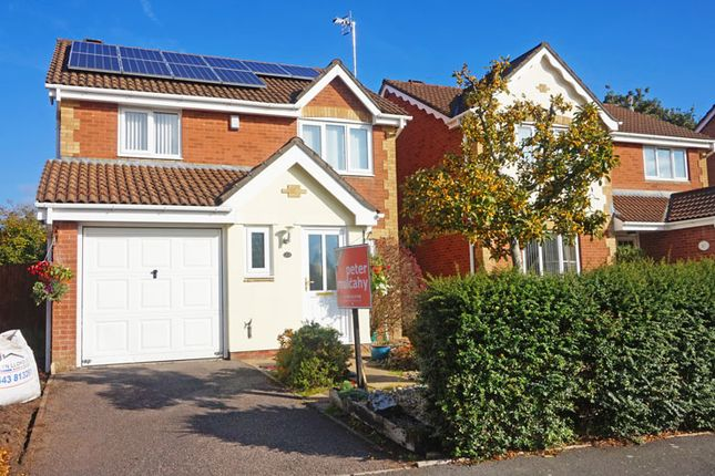 Thumbnail Detached house for sale in Sorrel Drive, Penpedairheol