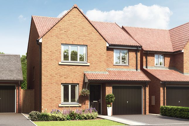 """Thumbnail Property for sale in """"The Elm"""" at Hazel Road, Blaydon-On-Tyne"""