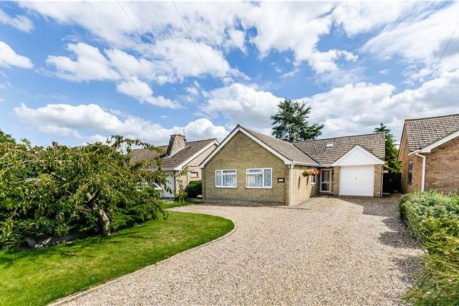 Thumbnail Detached bungalow for sale in Tanners Lane, Soham, Ely