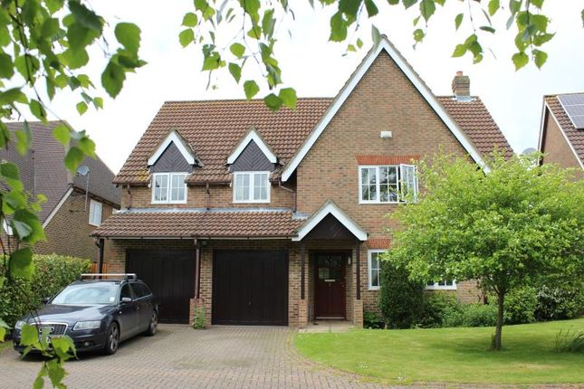 Thumbnail Detached house to rent in Wansdyke Road, Great Bedwyn