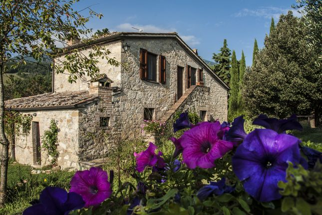 Thumbnail Country house for sale in Piazza, Cetona, Siena, Tuscany, Italy