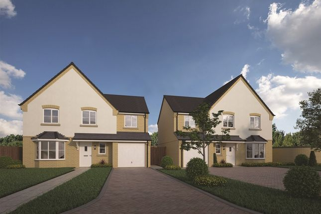 Thumbnail Detached house for sale in The Velvet At Weaver's Meadow, Great Cornard, Sudbury