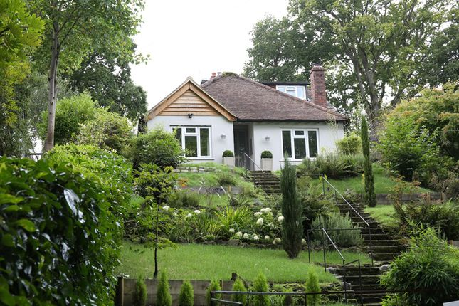 Thumbnail Detached bungalow to rent in Marley Lane, Haslemere
