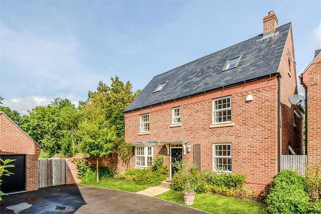 Thumbnail Detached house for sale in Magnolia Walk, Romsey, Hampshire