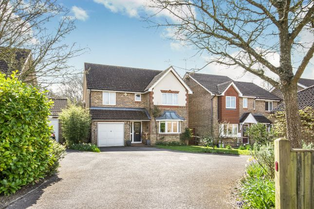 Thumbnail Detached house for sale in Holm Oaks, Cowfold