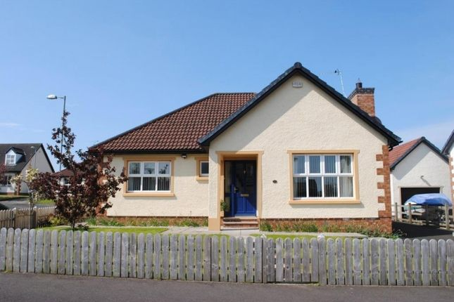 Thumbnail Bungalow for sale in Mountview Crescent, Ballymoney