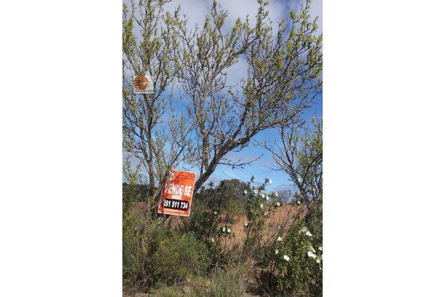 Land for sale in Alcoutim E Pereiro, Alcoutim E Pereiro, Alcoutim