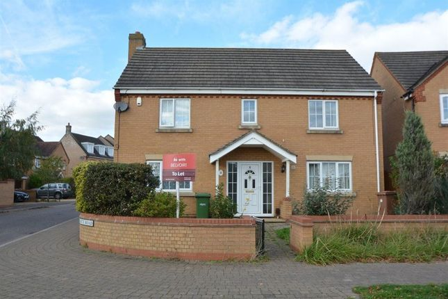 Thumbnail Property to rent in Holly Walk, Hampton Hargate, Peterborough