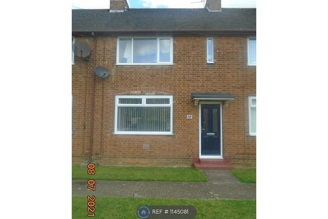 Thumbnail Terraced house to rent in Wellington Road, Lindholme, Doncaster