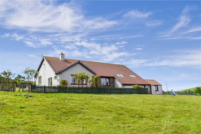 Thumbnail Detached house for sale in Muckle Roe, Brae, Shetland