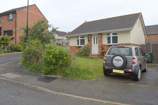Thumbnail Detached bungalow to rent in Nelson Drive, Cowes