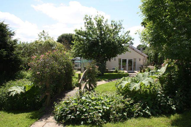 Thumbnail Detached house for sale in Fifehead Neville, Sturminster Newton