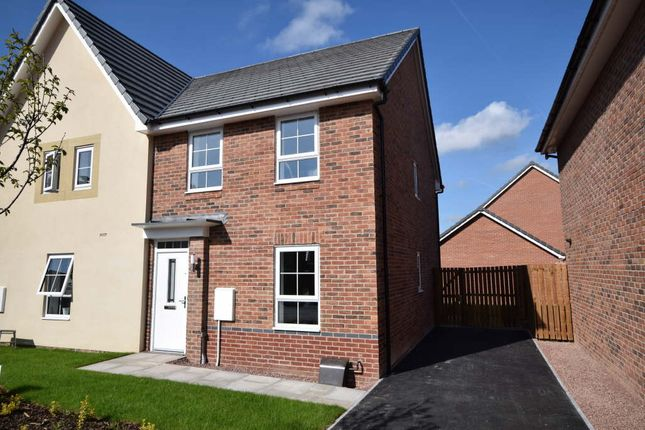 Thumbnail Semi-detached house to rent in Brompton Lane, Auckley, Doncaster