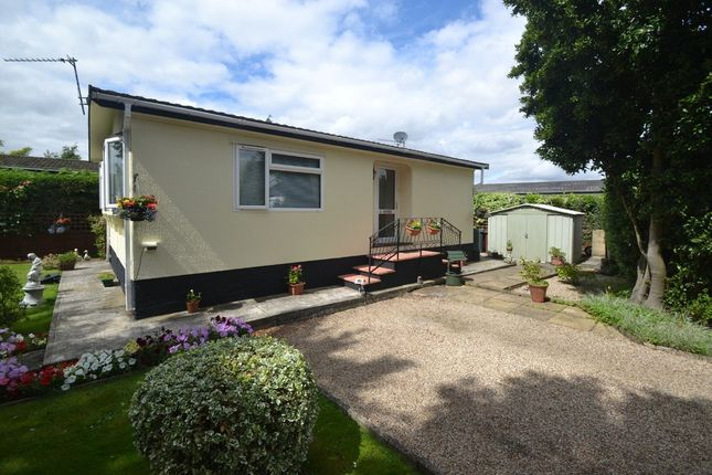 Thumbnail Detached bungalow for sale in Wixfield Park, Great Bricett, Ipswich