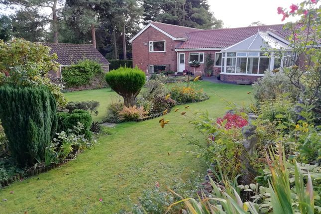 Thumbnail Detached house for sale in Hall Walk, Welton, Brough