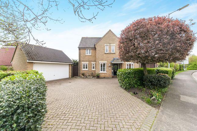 Thumbnail Detached house for sale in Fambridge Road, Maldon