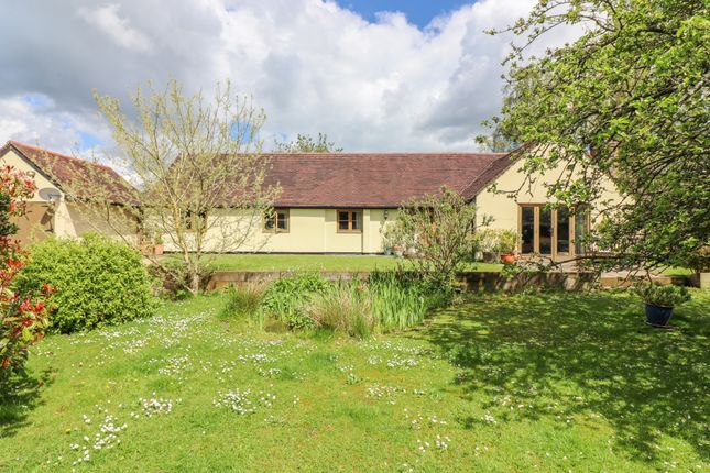 Thumbnail Detached bungalow for sale in Hammonds Lane, Ropley, Alresford