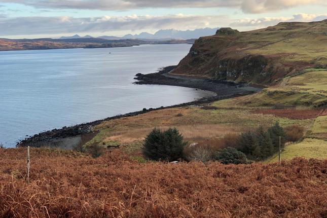 Borreraig, Dunvegan, Isle Of Skye IV55