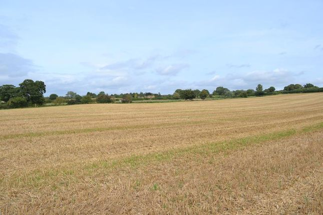 Thumbnail Land for sale in Land At Furze Lane, Hidcote Boyce, Chipping Campden, Gloucestershire