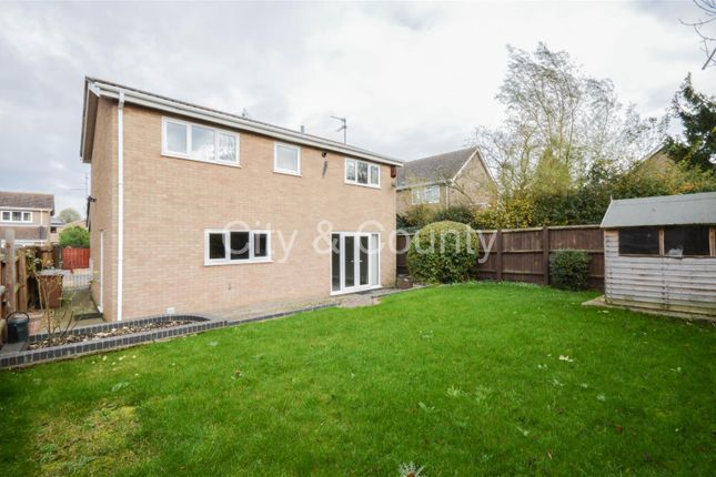 Property To Rent Thorney Peterborough