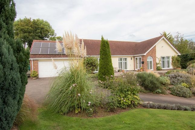 Thumbnail Detached bungalow for sale in Goodrich, Ross-On-Wye