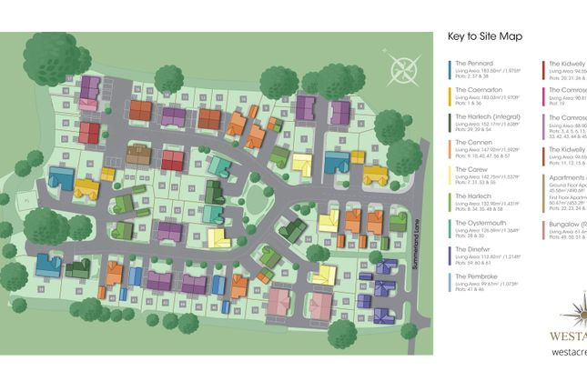 Site Plan of Plot 60 The Dinefwr, Caswell, Swansea SA3