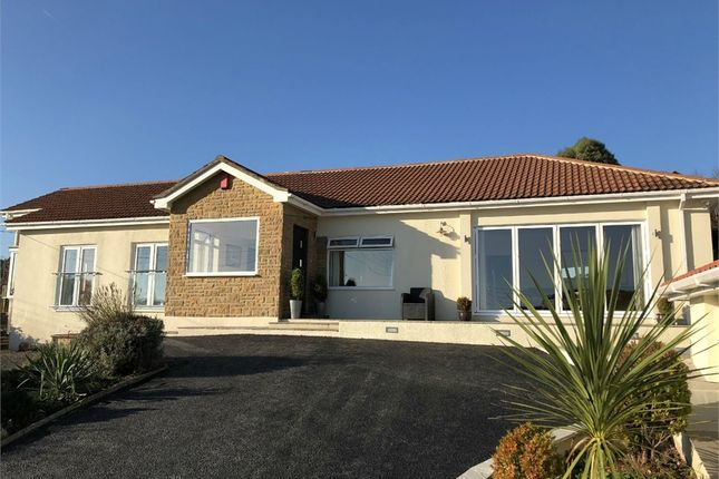 Thumbnail Detached bungalow for sale in Beer, Seaton, Devon