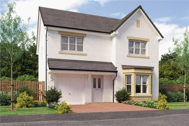 """Thumbnail Detached house for sale in """"Dale Det"""" at Bo'ness"""
