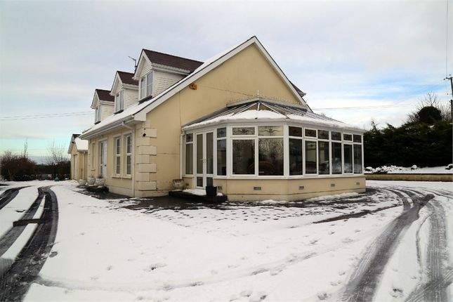 Thumbnail Detached house for sale in Brockagh Road, Eglinton, Londonderry