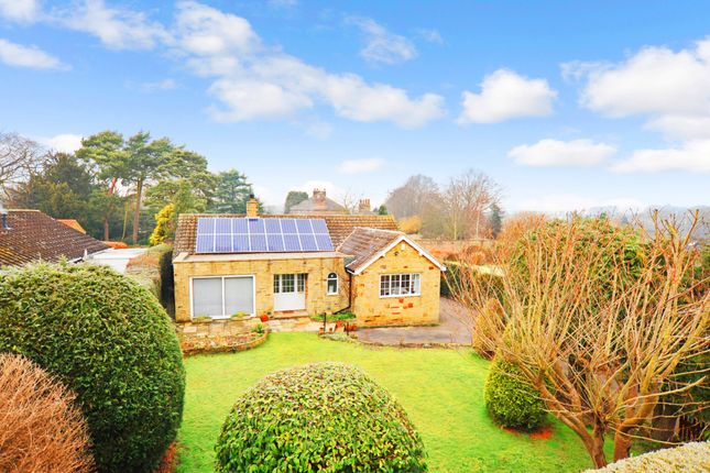 Thumbnail Detached bungalow for sale in Clive Road, Spofforth, Harrogate