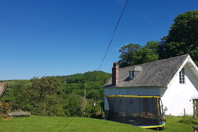 Thumbnail Detached house for sale in Buckland, Braunton