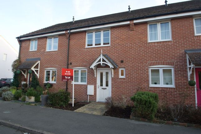 Thumbnail Terraced house to rent in Romney Road, East Anton, Andover