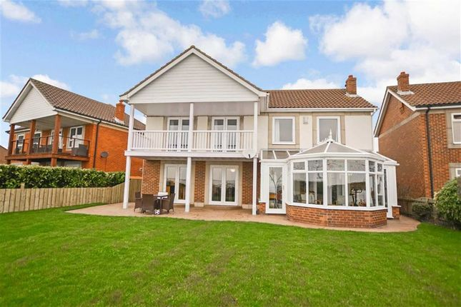 Thumbnail Detached house for sale in Caledonia Park, Victoria Dock, Hull