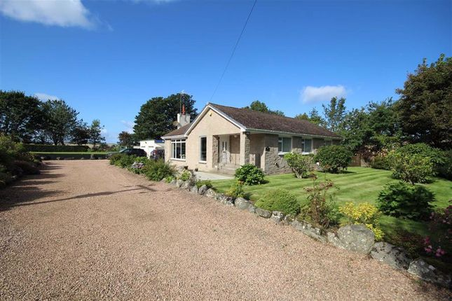 Thumbnail 3 bed detached bungalow for sale in Foulcauseway, By Cupar, Fife