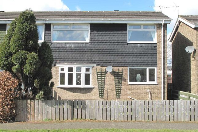 Thumbnail Semi-detached house to rent in Shanklin Place, Beaconhill Green, Cramlington