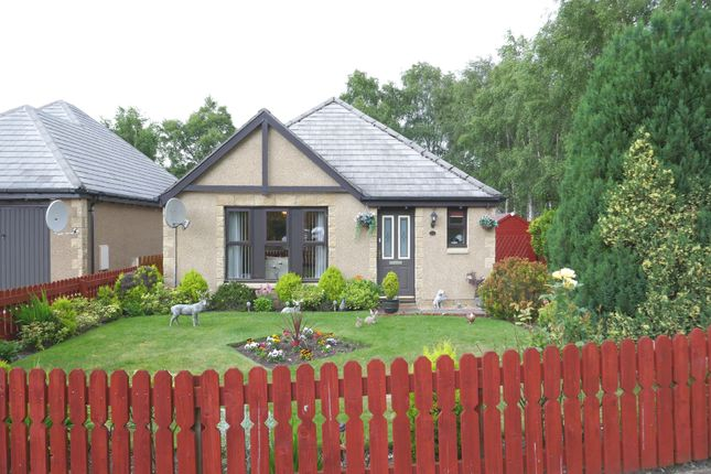 Thumbnail Bungalow for sale in Carn Mor, Aviemore