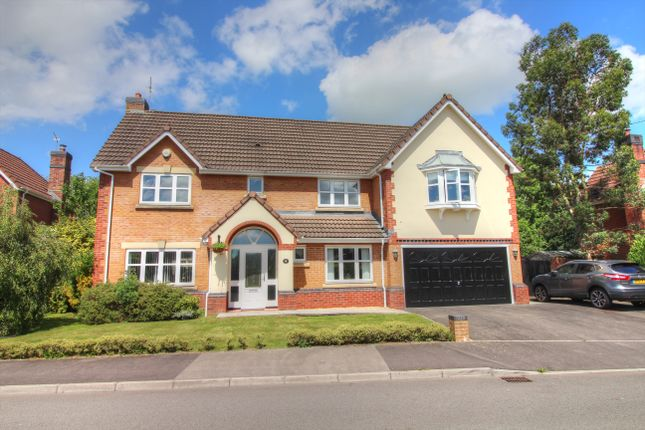 Thumbnail Detached house for sale in Silure Way, Langstone, Newport