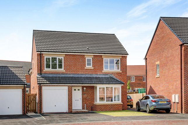 Thumbnail Detached house for sale in Akenshaw Drive, Seaton Delaval, Whitley Bay