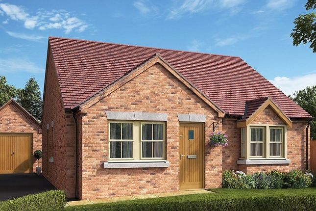 Thumbnail Bungalow for sale in Rookery Meadows, Scotter