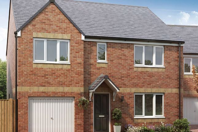 """Thumbnail Detached house for sale in """"The Thornton"""" at Stobhill Road, Gorebridge"""